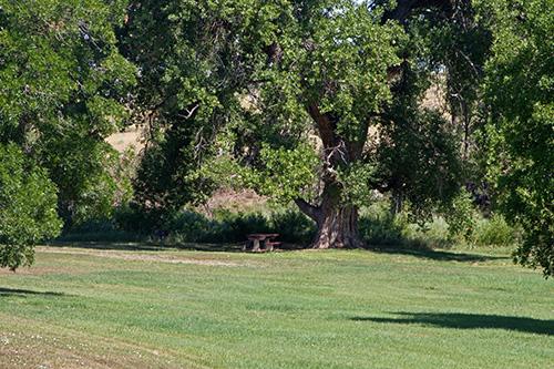 Deer Creek Picnic Area