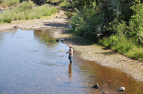 Fishing on the South Platte River