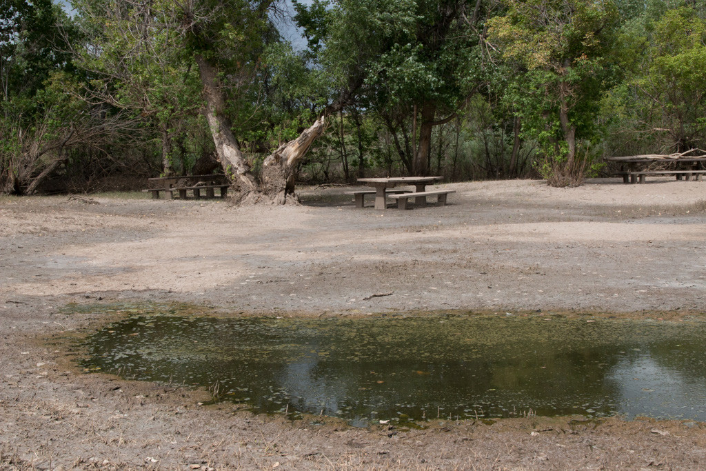 Deer Creek Picnic Area
